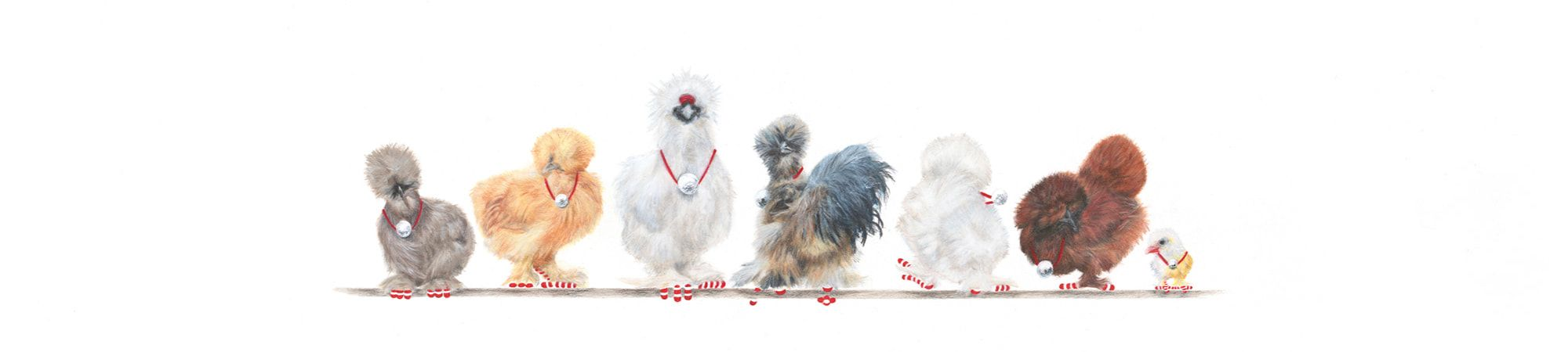 7-Silkie-Bantams-Banner-2-Christmas-2020