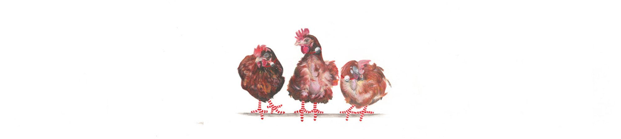 3-Rescue-Hens-Banner-2-Christmas-2020