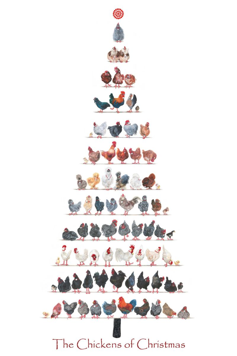 A3-Christmas-Chicken-poster-for-web-smaller