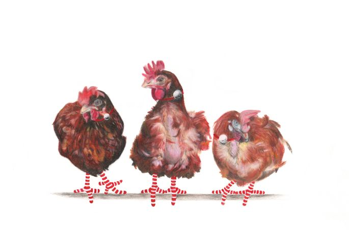 3-Rescue-Hens-Artworks-Page-Christmas-2020