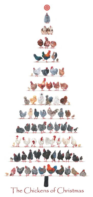 A3-Christmas-Chicken-poster-HP-banner
